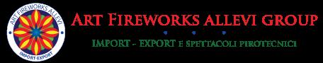 Vendita Fuochi d'artificio | Artfireworks